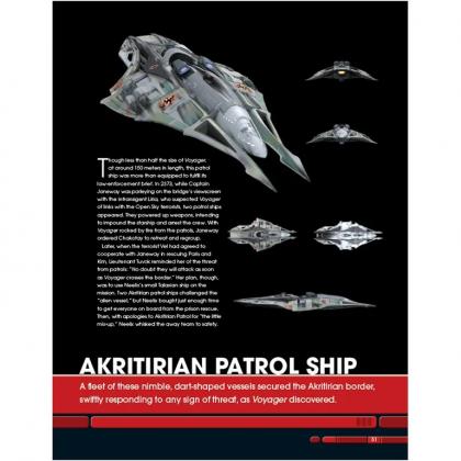 The Borg and The Delta Quadrant